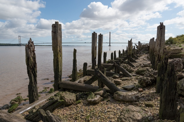 Old Docks - Humber Bridge