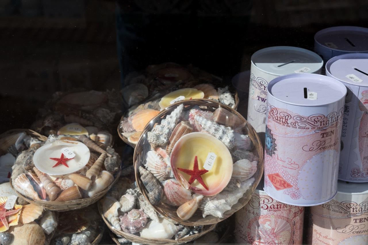 Sea Shells - Mablethorpe